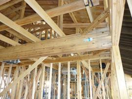 大規模木造建築物 建設現場